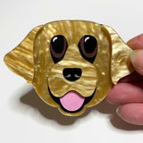 what willow did brooch 'eva the retriever'