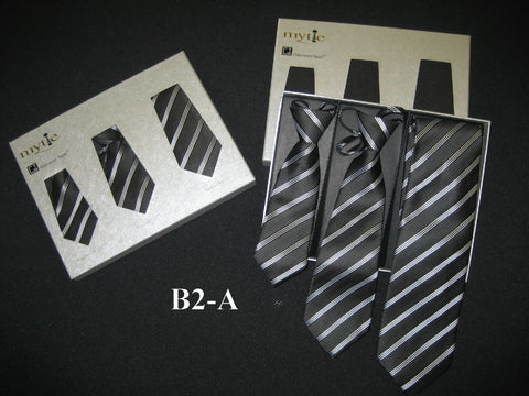 Mytie Father and Sons Matching Ties Set B2-A