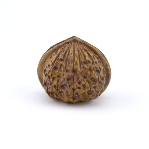 Tea Pet - Walnut Shape Small Size