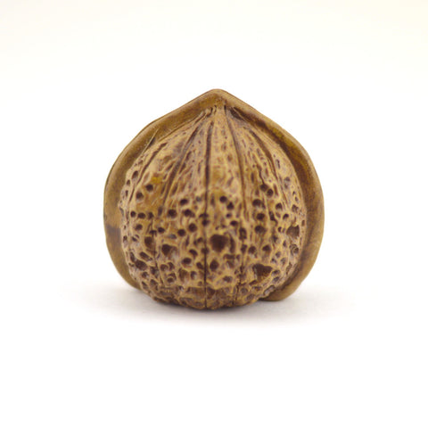 Tea Pet  - Walnut Shape Big Size