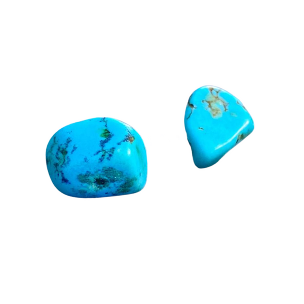 Be Free Turquoise Stud Earrings
