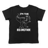Lil Shirts Big Brother Dinosaur Little Boys Youth and Toddler Shirt