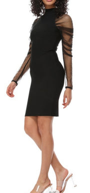 T Neck Dress with Sheer Sleeve