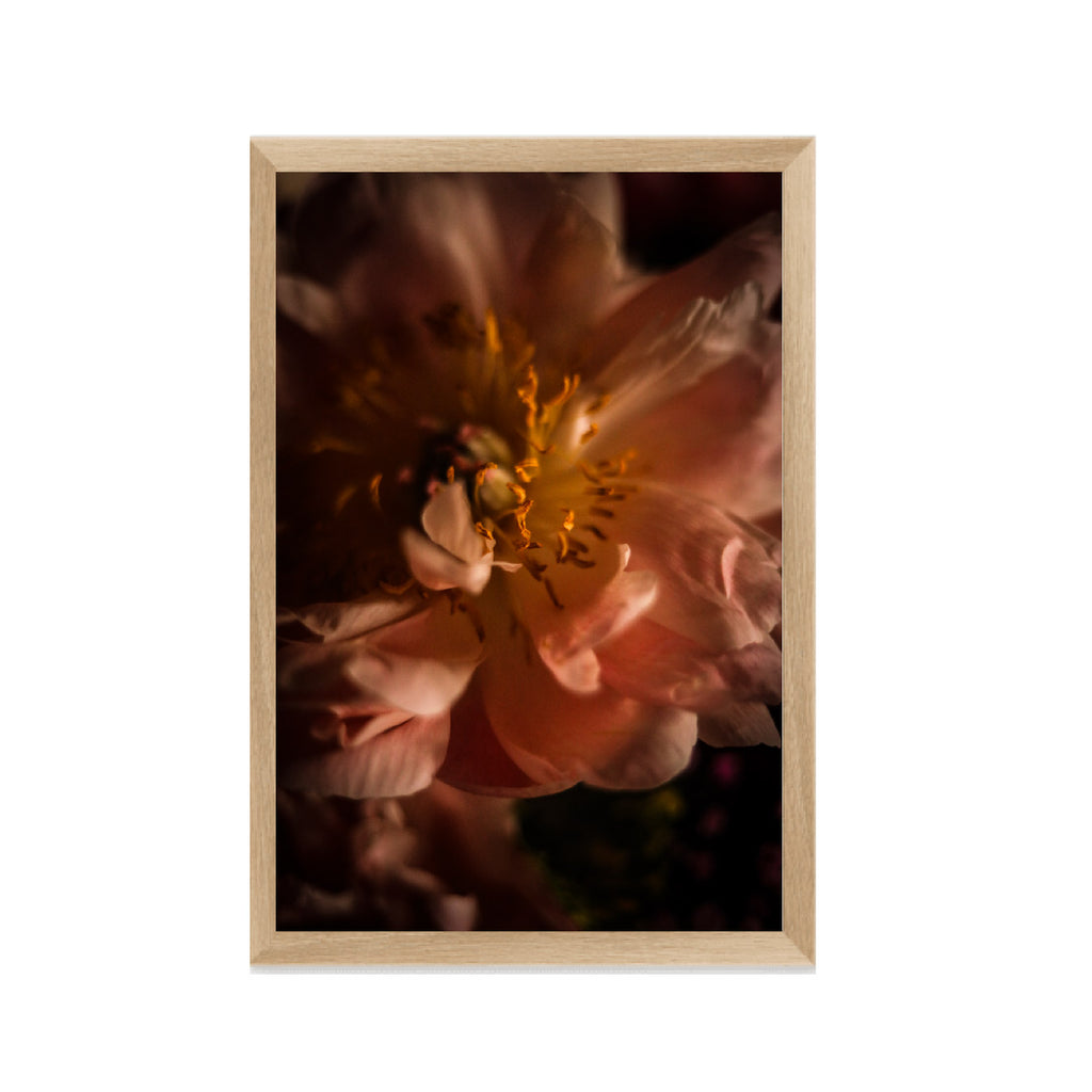 Ripe Flora Fine Art Photographic Print