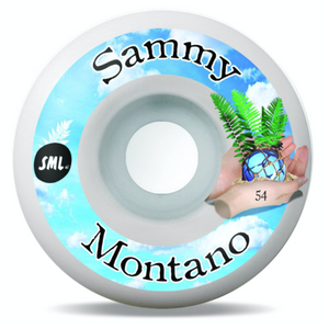 SML Sammy Montano Tide Pool Wheel