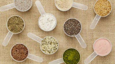 What to Look for When Choosing a Plant Based Protein Powder