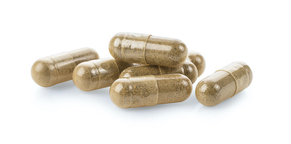 Natural Supplements for Gut Health