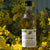 Tarragon White Wine Vinegar France - 500ml
