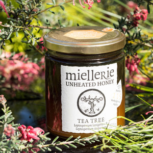 Tea Tree (Manuka) Honey-325g