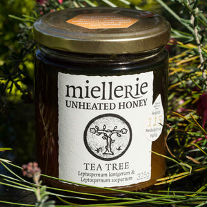Tea Tree (Manuka) Honey