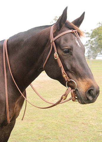 Quick Change Bridle Futurity Knot