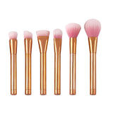 16 Pc Angel Samples Brush Set
