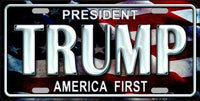Trump America First Metal Novelty License Plate