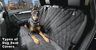 How To Choose a Dog Seat Cover
