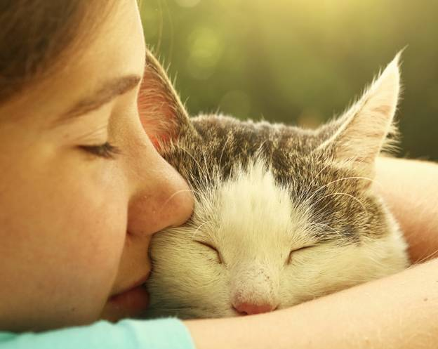 5 Psychological Benefits to Having Pets at Home