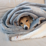 Waterproof Plush Dog Blanket