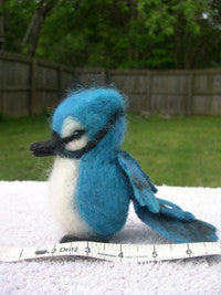 Knitted/Felted Blue Jay