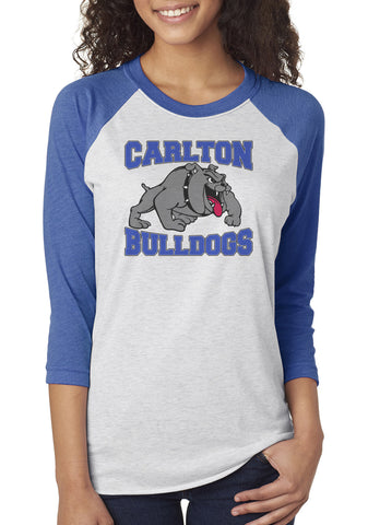 6051 Next Level Triblend Unisex Raglan - Carlton Bulldogs