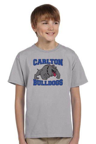 G200B - Gildan Youth Cotton Tee - Carlton Bulldogs