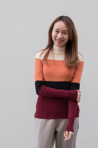 High Neck Color Block Fitted Sweater