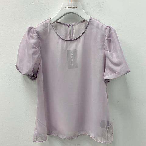 Sheer Puffy Sleeves Top