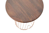 JACKSON // SIDE TABLE // Walnut & Copper