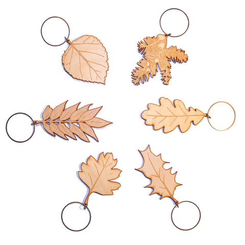 British Isles Leaves - Set of Six<br>(Natural Wood)