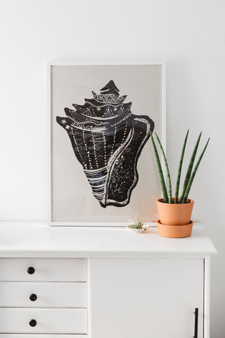 Conchstellation Art Print
