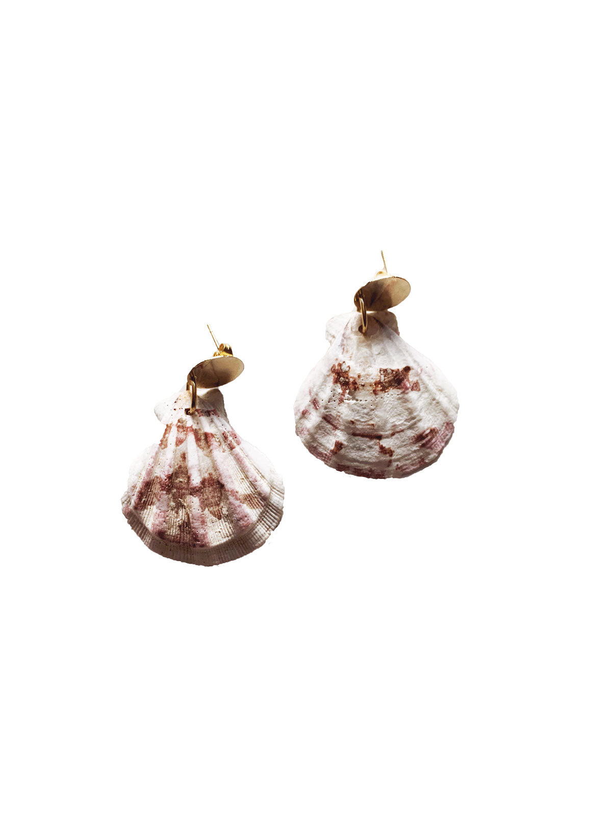 Seashell Handmade Earrings