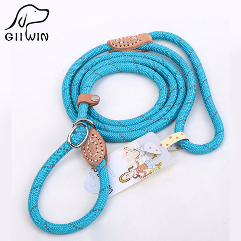 [GIIWIN] Pet Products For Large Dog Leash Collar Harness Puppy Cat Accessories Breakaway Pet Dog Leash Lead Basic Collars py0237