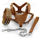 Leather Spiked Studded Pet Dog Collar Harness and Chain Leash Military Set of Matching  for Medium Large Xlarge Breeds