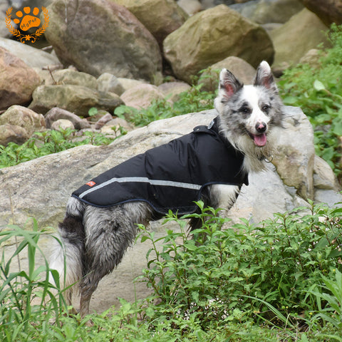 Safe Reflective Dog Clothes Water Resistant Pet Coat Spring Outdoor Breathable Sportswear Purple/Black Jacket For Dog VC-JK12013