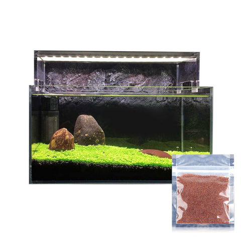 Home Aquarium Decoration Water Leaf Grass High Germination Rate Seeds  Live Plant Mini Fish Tank Landscape Ornament