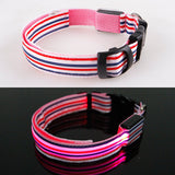 LED Night Flashing Glowing Pet Dog Collar,Cat Collar Luminous for Dogs Cats Dog Accessories Dog Supplies Dropshipping