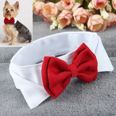 Pet Puppy Kitten Dogs Cat Adjustable Bow Tie Collar Necktie Bowknot Bowtie Holiday Wedding Decoration Accessories