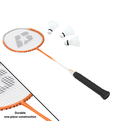 Champions Volleyball & Badminton Set