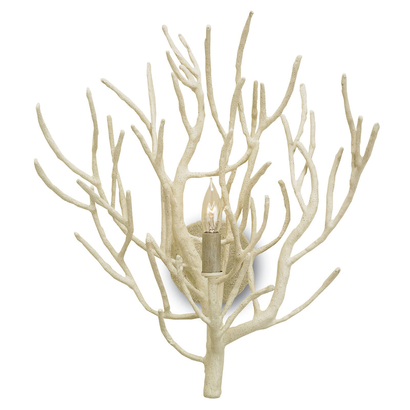 Currey and Company 5158 Eventide Wall Sconce in White Coral