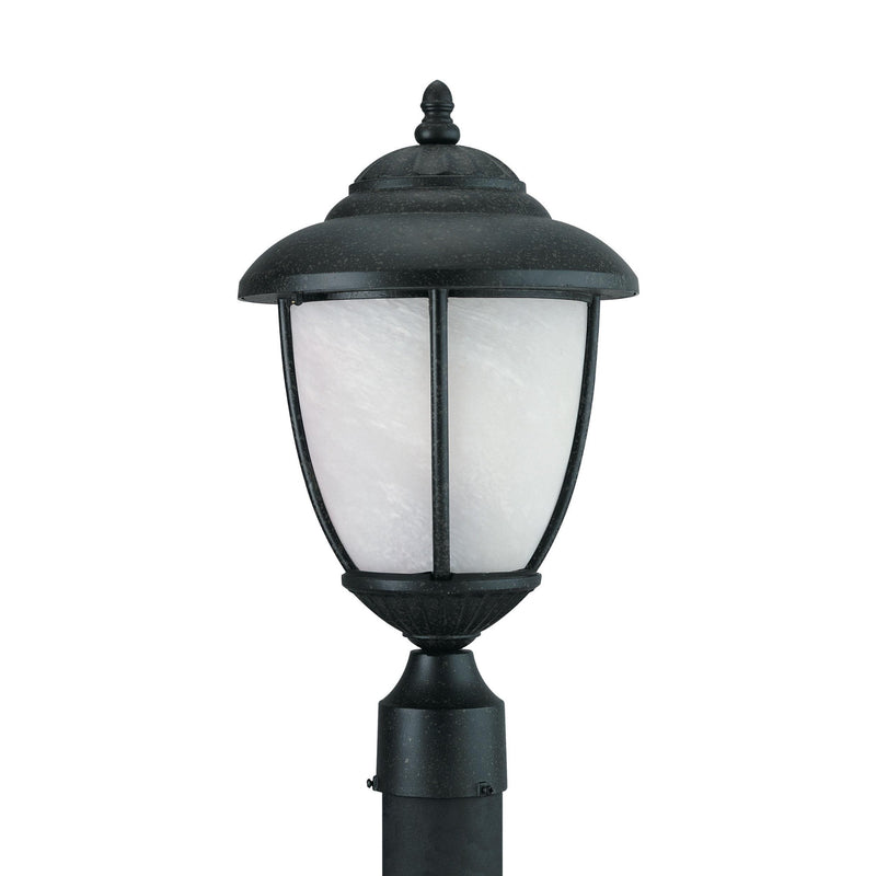 Generation Lighting 82048-185 Sea Gull Yorktown 1 Light Outdoor Light in Forged Iron