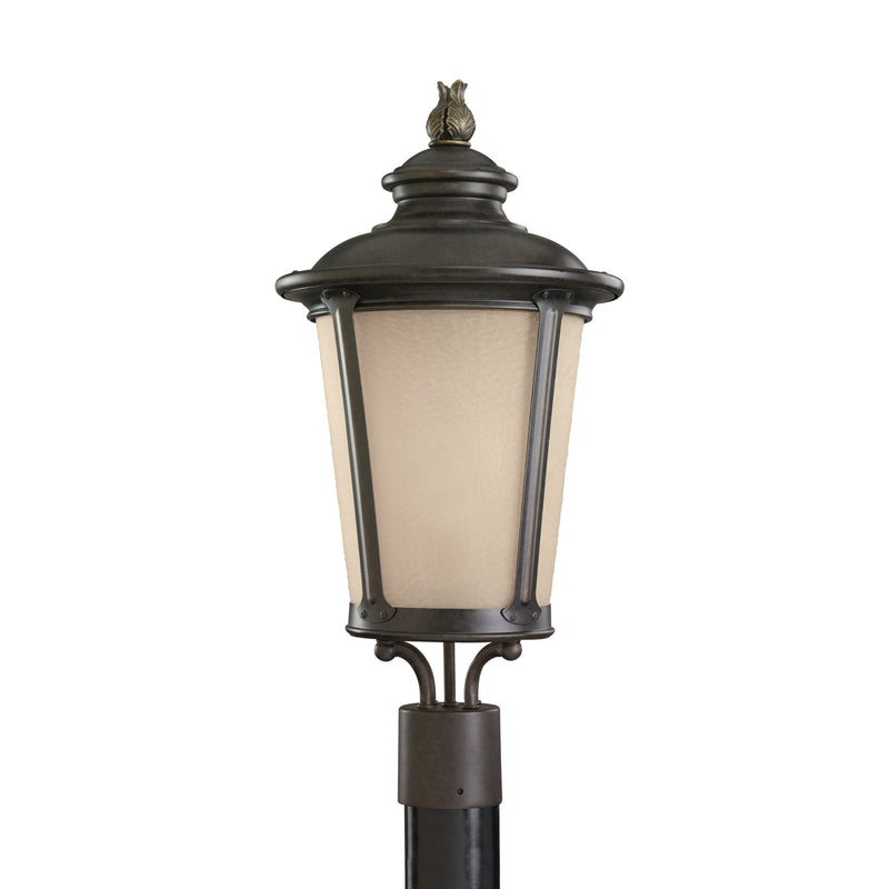 Generation Lighting 82240-780 Sea Gull Cape May 1 Light Outdoor Light in Burled Iron
