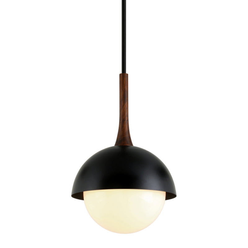 Troy Lighting F7644 Cadet 1lt Pendant in Hand-Worked Iron