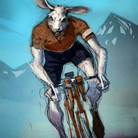 Cycling Bunny