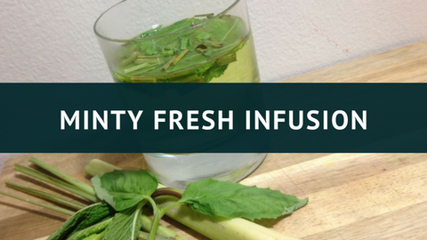 Minty Fresh Infusion