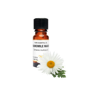 Chamomile (Maroc)  Pure Essential Oil  (10ml)