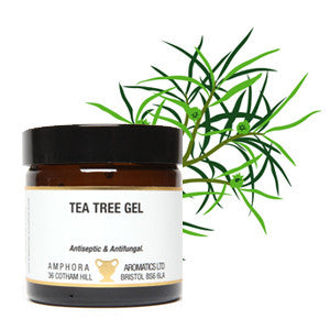 Tea Tree Gel  (60ml Jar)