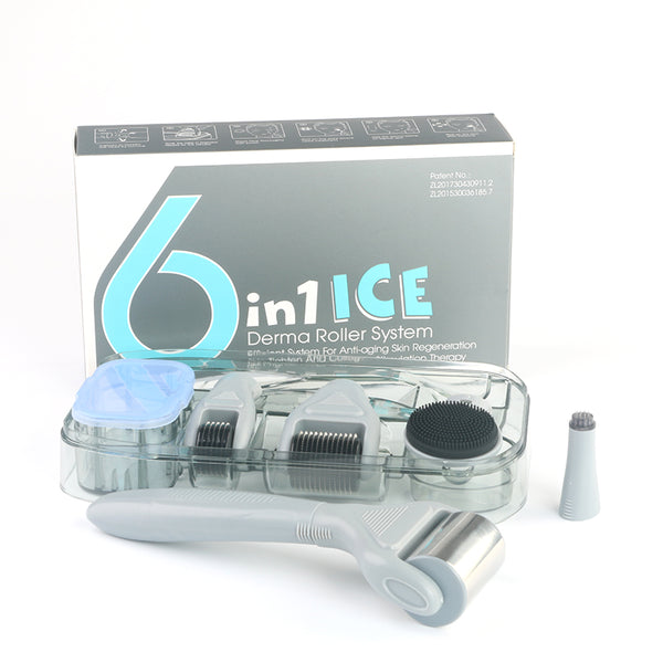 beautimate-6 in 1 Ice Derma Roller Set Microneedle Skin Care With Ice Roller & Travel Case - beautimate