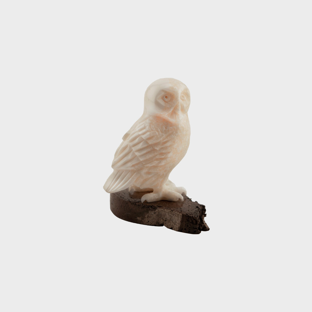 Ivory Owl on Walrus Jawbone