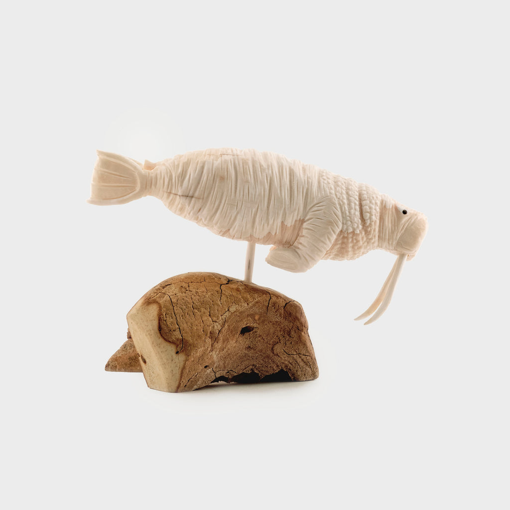 Walrus Made From Ivory