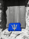 Trident Clutch Bags