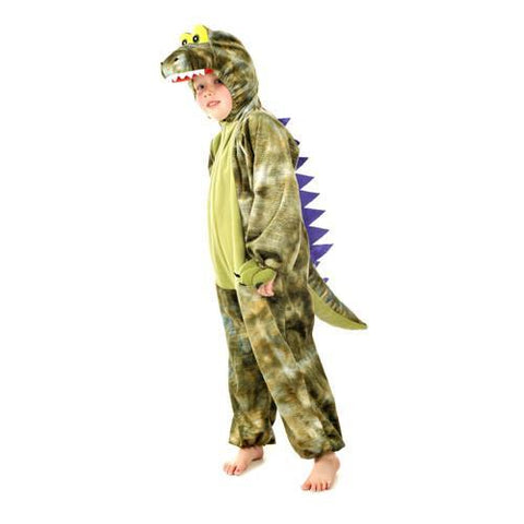 Dressing up  / Dinosaur