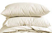 Organic Cotton Pillow Protector Covers WHITE SALE